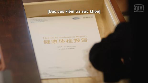 """Như Ý Phương Phi ngoại truyện: Cúc Tịnh Y """"bật mode"""" cưa cẩm, Trương Triết Hạn mắc bệnh khó chữa - Ảnh 18."""