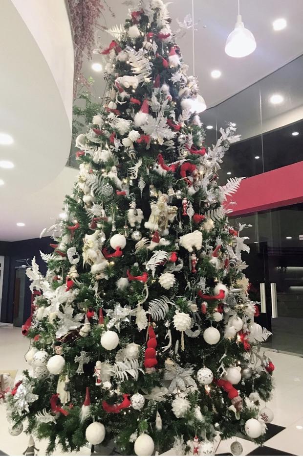 Trường con nhà giàu ĐH Thăng Long lại trang trí Giáng sinh đẹp mê hồn, đố trường nào làm lại - Ảnh 5.