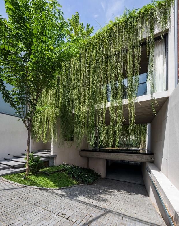 Mất 4 năm hoàn thiện, căn villa ở Sài Gòn xanh mướt như một khu rừng nhỏ, đi vào bên trong càng mê - Ảnh 4.