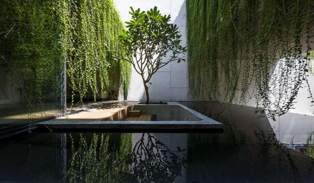 Mất 4 năm hoàn thiện, căn villa ở Sài Gòn xanh mướt như một khu rừng nhỏ, đi vào bên trong càng mê - Ảnh 11.