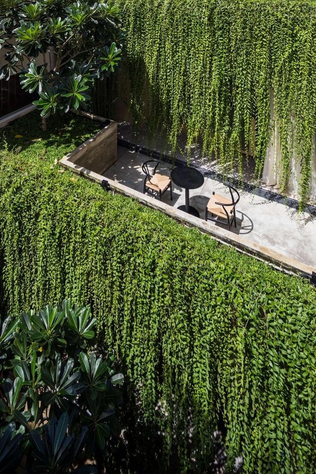 Mất 4 năm hoàn thiện, căn villa ở Sài Gòn xanh mướt như một khu rừng nhỏ, đi vào bên trong càng mê - Ảnh 12.