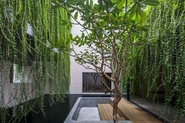 Mất 4 năm hoàn thiện, căn villa ở Sài Gòn xanh mướt như một khu rừng nhỏ, đi vào bên trong càng mê - Ảnh 17.