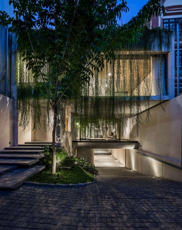 Mất 4 năm hoàn thiện, căn villa ở Sài Gòn xanh mướt như một khu rừng nhỏ, đi vào bên trong càng mê - Ảnh 3.