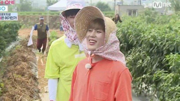 Kpop có rich kid phú nông đích thực: Gia đình điều hành cả trang trại riêng, bạn bè sao nô nức vì quà đặc biệt mùa thu hoạch - Ảnh 8.