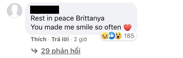 Cộng đồng mạng Việt Nam và quốc tế tiếc thương trước sự ra đi đột ngột của nữ vlogger gốc Việt Brittanya Karma - Ảnh 6.