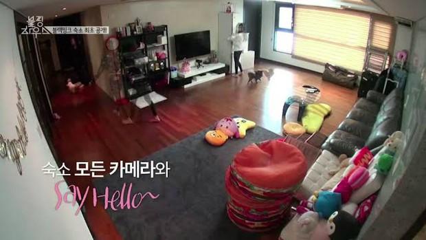 Làm idol nhà YG là sướng nhất: Tiền lương khủng, được đầu tư về concept, mới debut đã được ở phòng riêng - Ảnh 3.
