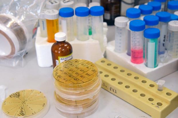 Nga đã có những nguyên mẫu vaccine ngừa HIV - Ảnh 1.