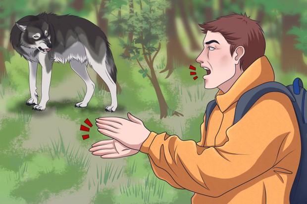 Chùm bí kíp sinh tồn sẽ giúp bạn thoát khỏi 6 tình huống cực nguy hiểm mà bản thân có thể đối mặt trong đời - Ảnh 6.