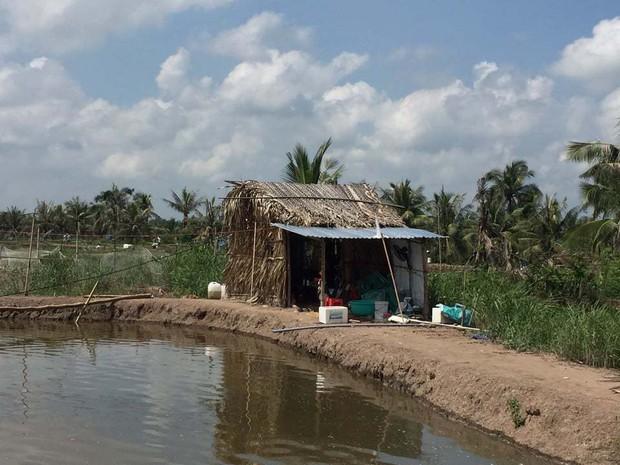 Hé lộ nguyên nhân đôi nam nữ tử vong trong lều trông cá ở Bắc Giang - Ảnh 1.