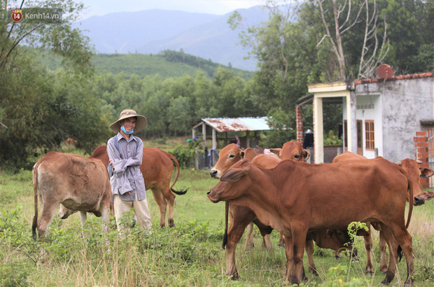 Về Bình Định chăn bò cùng Soytiet: Chàng trai mồ côi từng đi ăn xin rồi trở thành hiện tượng mạng khiến nhiều sao quốc tế phát cuồng - Ảnh 9.
