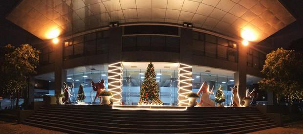Noel tại các trường Đại học: Nơi có máy phun tuyết nhân tạo, nơi lung linh, rực rỡ như lễ hội ánh sáng - Ảnh 4.