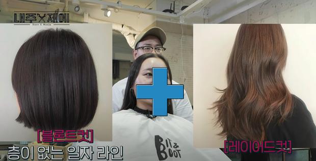 Hairstylist người Hàn bày cách cứu rỗi mái tóc mỏng dính, hói cả mảng: Chị em tự làm ở nhà ngon ơ mà chẳng cần ra tiệm - Ảnh 3.