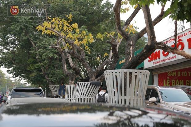Những cây sưa đỏ mang giáp sắt, lắp camera theo dõi đã chết khô: Người Hà Nội xót xa, lo lắng - Ảnh 5.