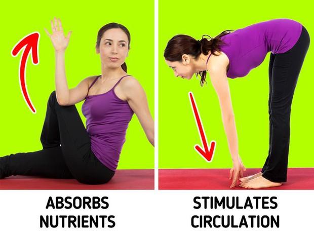 9 cách để làm hệ tiêu hóa của bạn hoạt động trơn tru hơn, ngăn chặn tình trạng tích trữ mỡ thừa - Ảnh 6.
