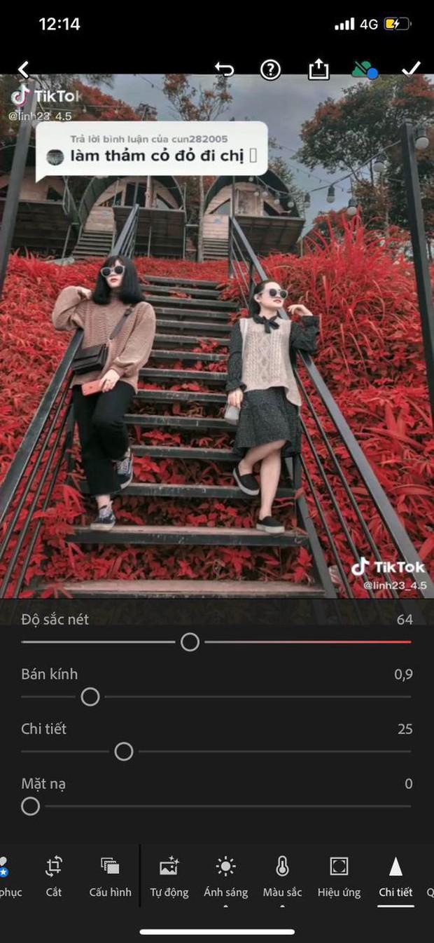 Bỏ túi công thức sống ảo mới, đổi màu thảm cỏ xanh xanh, đỏ đỏ đang hot rần rần trên TikTok - Ảnh 11.