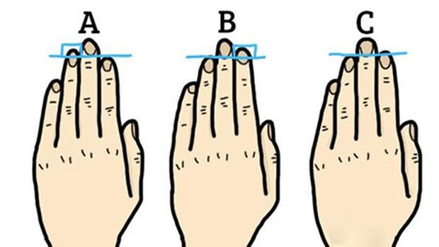 Hình dáng, độ dài ngón tay, mu bàn tay sẽ tiết lộ điều gì về tính cách của bạn? - Ảnh 5.