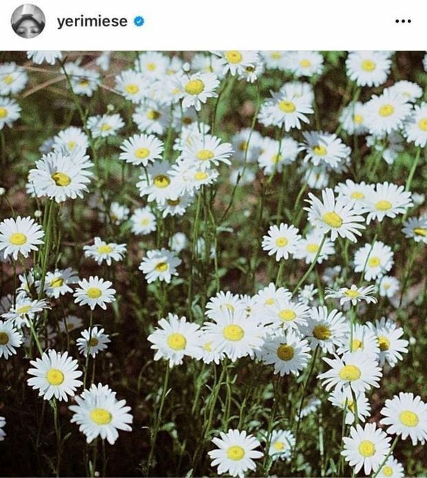 Fan soi ra hint Red Velvet comeback trong MV của Taeyeon: Netizen tấm tắc khen vũ trụ liên kết nhà SM quá đỉnh - Ảnh 4.