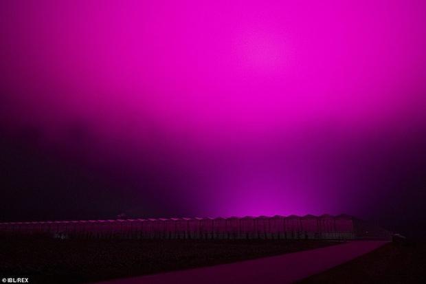 Bầu trời Thụy Điển bất ngờ chuyển sang màu tím lạ - Ảnh 3.