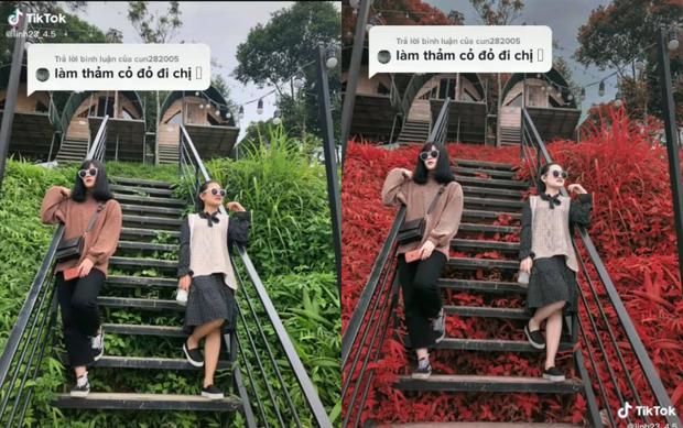 Bỏ túi công thức sống ảo mới, đổi màu thảm cỏ xanh xanh, đỏ đỏ đang hot rần rần trên TikTok - Ảnh 1.