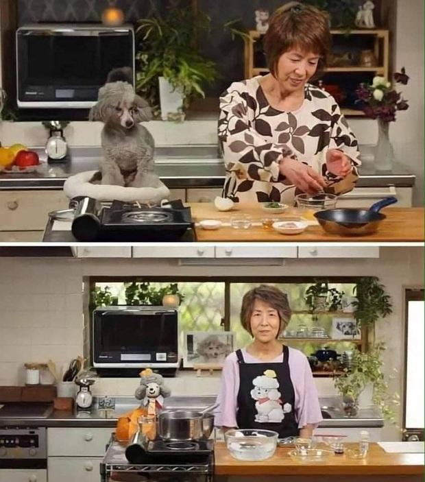 Đầu bếp nổi tiếng tại Nhật Bản với kênh YouTube 1,5 triệu người theo dõi nấu ăn bên cạnh thú bông, nguyên nhân khiến ai cũng phải rơi nước mắt - Ảnh 3.