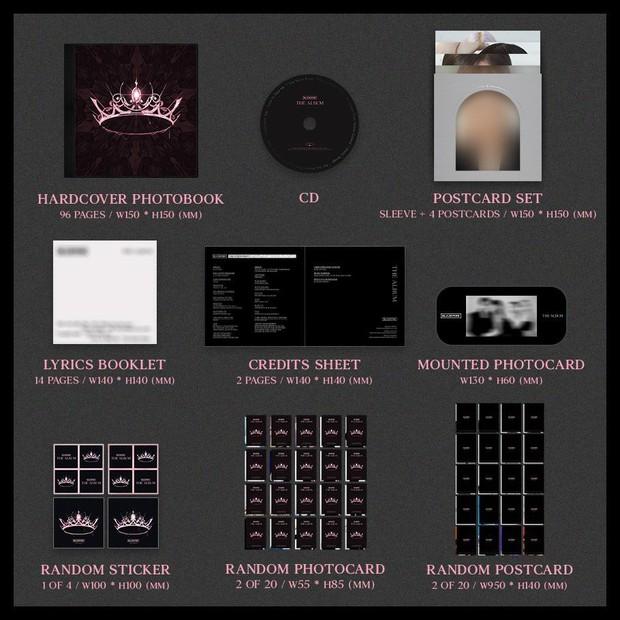 Fan tiền đình khi xem bảng giá đĩa đơn của Sơn Tùng M-TP, so với album BLACKPINK, EXO và loạt idol Kpop còn đắt hơn! - Ảnh 7.