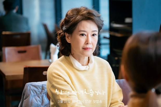 Chị đại Kim Hee Ae giành ngôi đầu bảng diễn viên truyền hình hot nhất 2020, Gong Yoo ở không bốn năm vẫn lọt top - Ảnh 8.