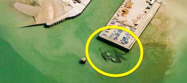 Những hình ảnh lạ lùng được tìm thấy bởi Google khiến cả thế giới hoang mang, khó hiểu - Ảnh 5.