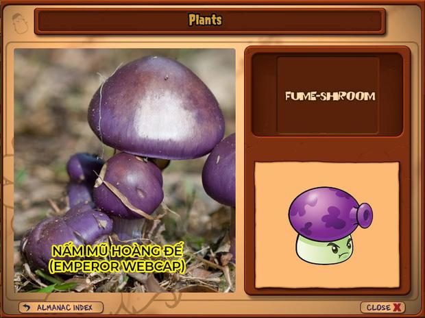 Nhà ai cũng 3 đời cày Plants vs Zombies nhưng chẳng ai biết hết những loại cây trong game này! - Ảnh 11.