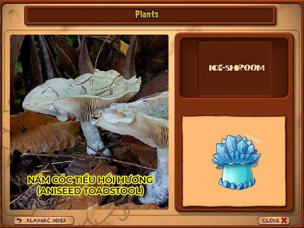 Nhà ai cũng 3 đời cày Plants vs Zombies nhưng chẳng ai biết hết những loại cây trong game này! - Ảnh 14.