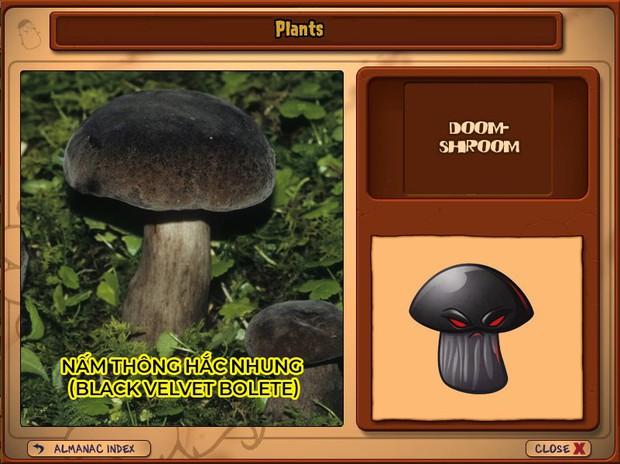 Nhà ai cũng 3 đời cày Plants vs Zombies nhưng chẳng ai biết hết những loại cây trong game này! - Ảnh 15.