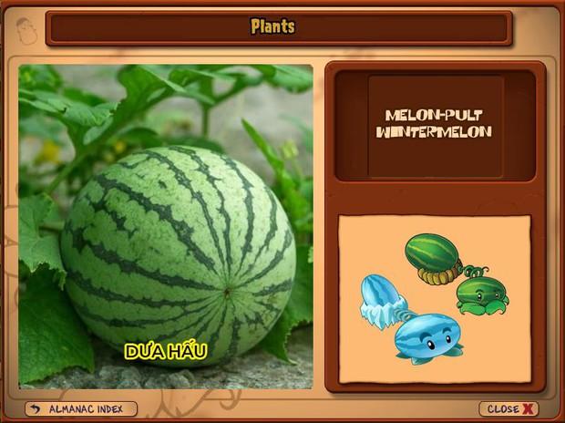 Nhà ai cũng 3 đời cày Plants vs Zombies nhưng chẳng ai biết hết những loại cây trong game này! - Ảnh 19.
