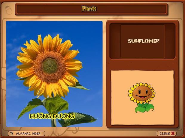 Nhà ai cũng 3 đời cày Plants vs Zombies nhưng chẳng ai biết hết những loại cây trong game này! - Ảnh 3.