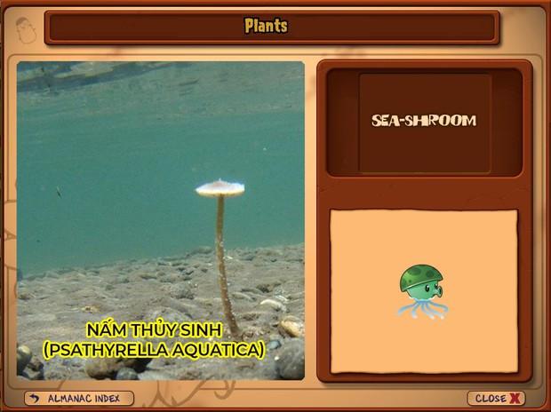Nhà ai cũng 3 đời cày Plants vs Zombies nhưng chẳng ai biết hết những loại cây trong game này! - Ảnh 26.