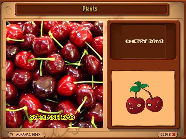 Nhà ai cũng 3 đời cày Plants vs Zombies nhưng chẳng ai biết hết những loại cây trong game này! - Ảnh 4.
