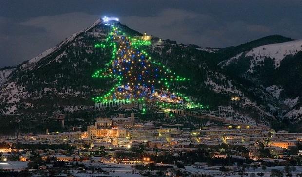Những cây thông Noel đặc biệt được ghi nhớ nhất trong lịch sử các mùa Giáng sinh khắp thế giới, kỳ công đến mức khiến ai cũng phải trầm trồ - Ảnh 6.