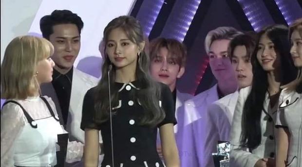 Hot lại khoảnh khắc loạt idol đờ đẫn vì hiệu ứng Tzuyu tại AAA 2019 ở Việt Nam, bảo sao thành gương mặt đẹp nhất thế giới - Ảnh 2.