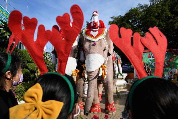 Ông già Noel không thèm tuần lộc, cưỡi hẳn voi đi phát quà khiến người dân lác mắt - Ảnh 2.