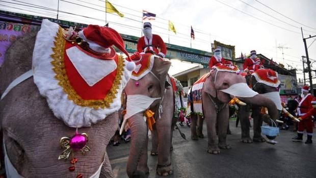 Ông già Noel không thèm tuần lộc, cưỡi hẳn voi đi phát quà khiến người dân lác mắt - Ảnh 3.