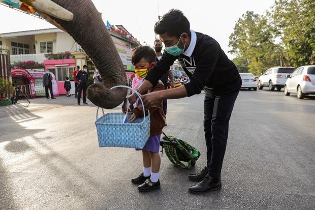 Ông già Noel không thèm tuần lộc, cưỡi hẳn voi đi phát quà khiến người dân lác mắt - Ảnh 4.