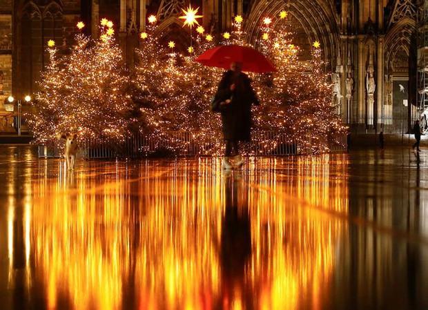 Thế giới rực sáng đón Giáng sinh sau một năm ảm đạm vì COVID-19 - Ảnh 6.