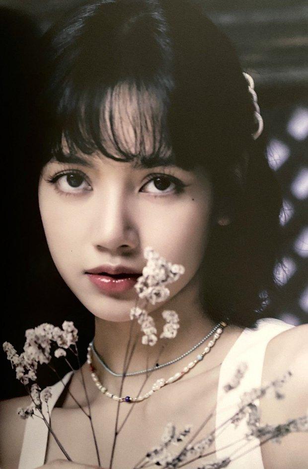 Vì đâu mà Lisa (BLACKPINK) vượt mặt Tzuyu (TWICE) trong Top 100 gương mặt đẹp nhất thế giới? - Ảnh 21.