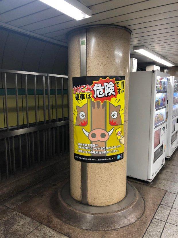 Những hình ảnh thú vị mà bạn chỉ có thể bắt gặp ở Nhật Bản, quả không ngoa khi gọi đây là quốc gia đến từ năm 3000 - Ảnh 7.