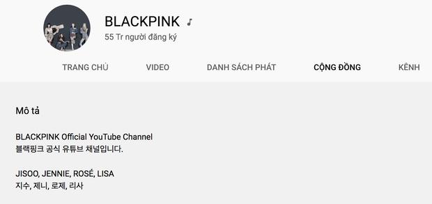 Sân khấu Pretty Savage cán mốc 100 triệu lượt xem, BLACKPINK là nhóm nhạc duy nhất trong năm 2020 làm được điều này! - Ảnh 8.