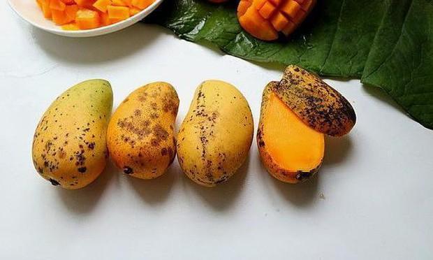 3 loại trái cây nằm trong danh sách đen có thể nuôi dưỡng tế bào ung thư - Ảnh 2.