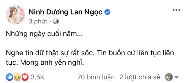Đan Trường, Nhật Kim Anh và dàn sao Việt bàng hoàng, bật khóc nói lời tiễn biệt ca sĩ Vân Quang Long - Ảnh 10.