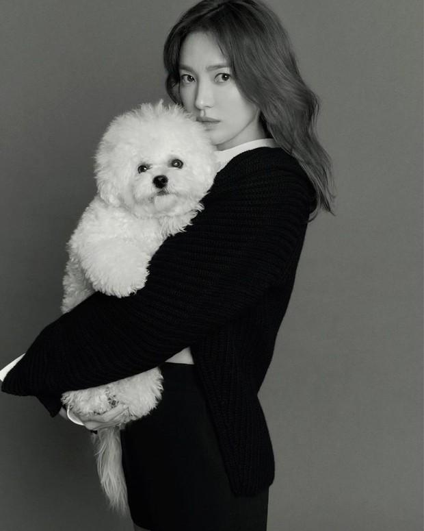 """Thì ra đây mới là ảnh tạp chí """"xịn mịn"""" của Song Hye Kyo: Choáng khi zoom cận visual, lộ diện nhân vật luôn gắn bó với cô hậu ly hôn - Ảnh 5."""
