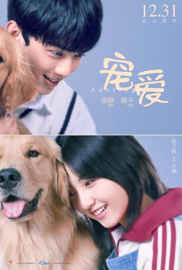 Ngô Lỗi - Trương Tử Phong tái hợp trong phim điện ảnh mới, cư dân mạng nháo nhào đòi ship - Ảnh 3.