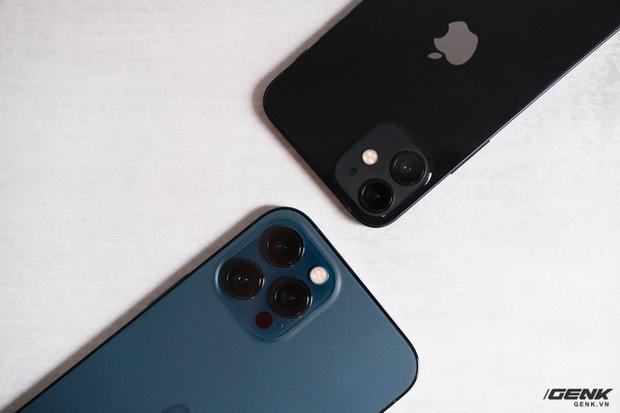 Trên tay chiếc iPhone bị người Việt ghẻ lạnh năm nay: Nhỏ tẹo bằng bàn tay, dùng một tay thì sướng, hai tay thì... sượng - Ảnh 12.