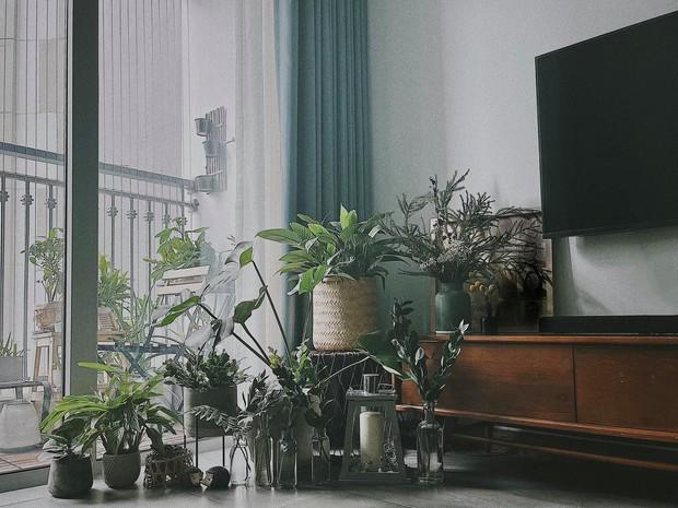 Căn hộ Vinhomes của nhà thiết kế nội thất: Tông màu xanh là lạ nhưng lên hình đẹp từng cm, sống ảo thì cực mê - Ảnh 3.