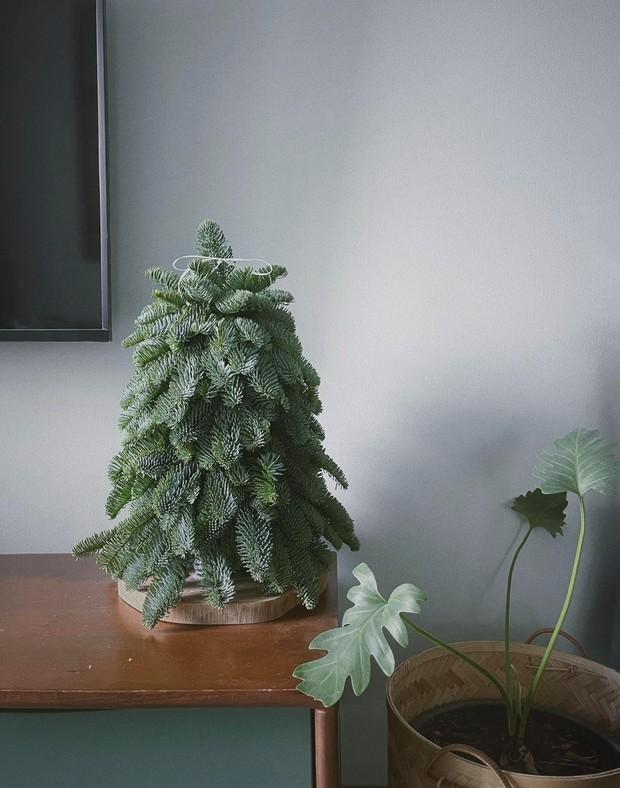 Căn hộ Vinhomes của nhà thiết kế nội thất: Tông màu xanh là lạ nhưng lên hình đẹp từng cm, sống ảo thì cực mê - Ảnh 4.